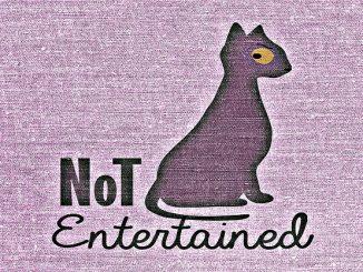 NetEnt Katze