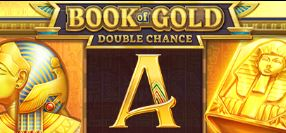 Playson Book of Gold Double Chance