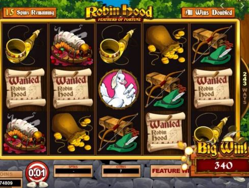 Robin Hood Slot Microgaming